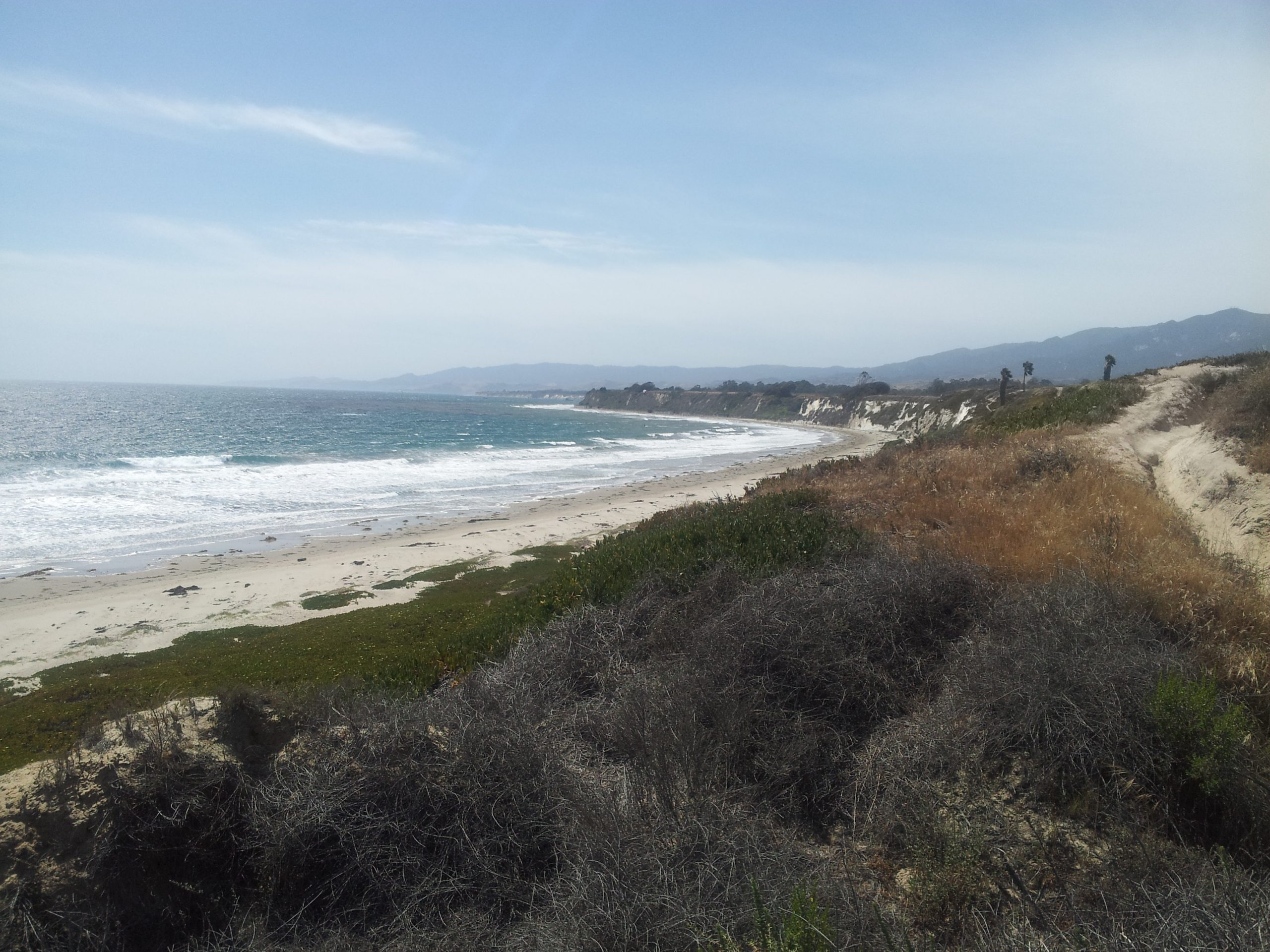 Follow DP and stay on the cliffs to head toward the Goleta Monarch Butterfly Reserve.