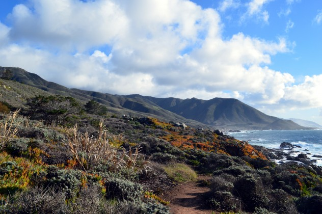 Big Sur is a top visited spot along the PCH. (photo by Stephanie)