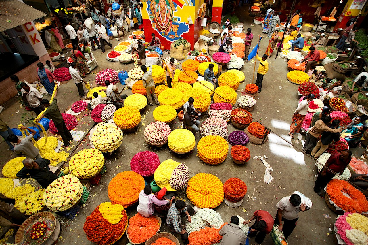 India is the most vibrant country in the world